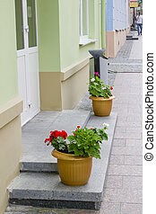 Facade of shop with glass door and flowers pots