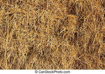 Straw in Farm