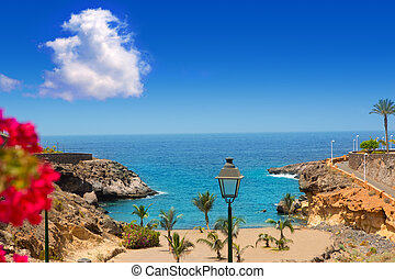 Beach Playa Paraiso costa Adeje in Tenerife at Canary...