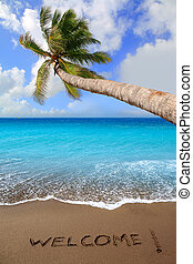 Brown beach sand with written word Welcome and tropical palm...
