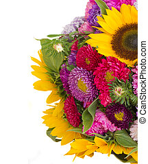mixed autumn flowers background isolated on white