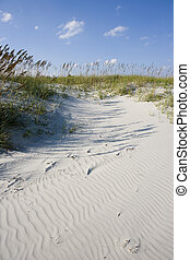 3915 - Wind blown sand at the foot of small gentle grass...