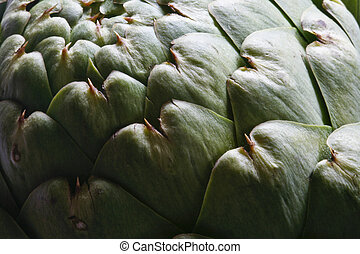 One Artsy Artichoke - This image depicts a globe artichoke...