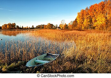 Glorious Autumn morning - Beautiful October morning at a...