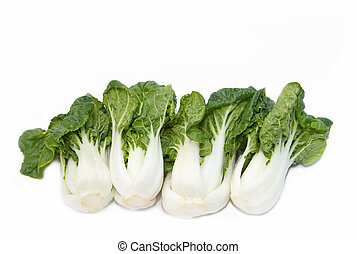 Bok choy chinese cabbage isolated on white