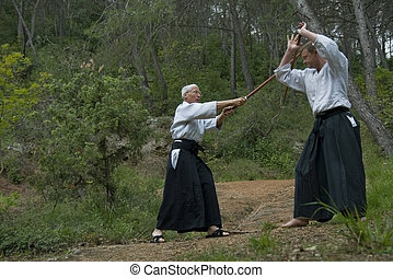 training of Aikido - Two adults (young man and senior) are...