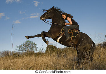 rearing stallion and girl - rearing black stallion and happy...
