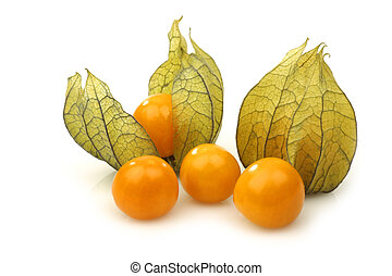 physalis fruit (Physalis peruviana)on a white background