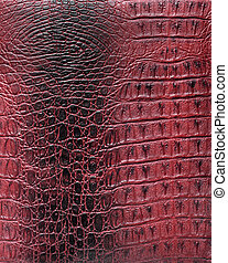 Texture of a reptile skin
