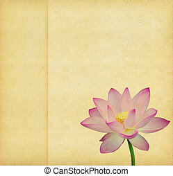 Water Lily on grunge textured