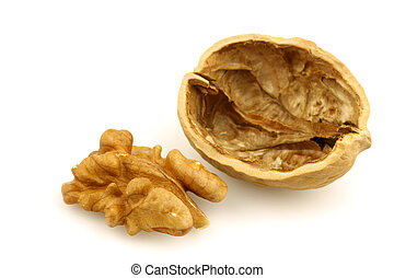 one opened walnut shell - one opened walnut shell and half a...