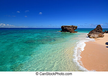 Gorgeous Beach in Summertime