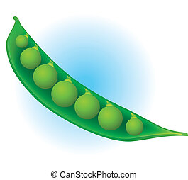 Pea pod - Fresh realistic pea pod with green peas