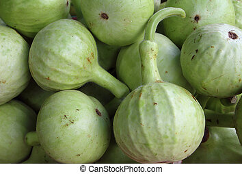 A group of Bottle Gourd