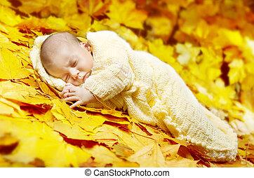 Autumn newborn baby sleeping in maple leaves.