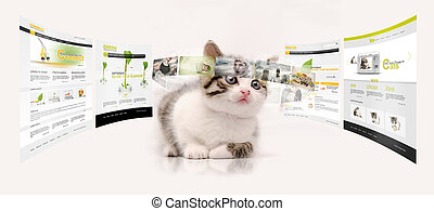 Young technology - Young kitty in virtual...