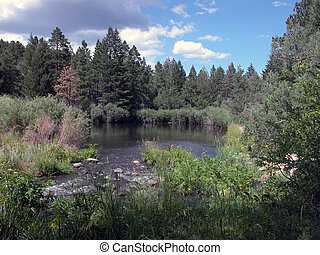 Cimarron River 2 - NM - The Cimarron River is located in...