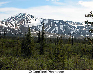 Denali Highway 2 - AK - These beautiful mountains are...