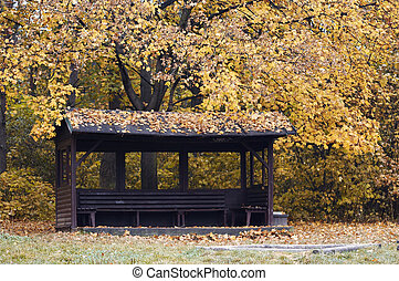 alcove in the autumn park - Cart-road and autumn landscape -...