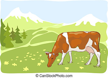 The white and red cow is grazed on the Alpine meadow.