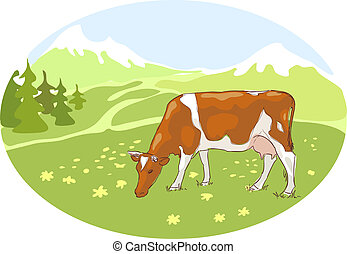 The white and red cow is grazed on the Alpine meadow. Vector...