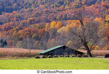 Farm in autumn - Farm lands in Appalachian mountains of West...