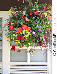 Flowers in hanging basket with white window and brown wall.