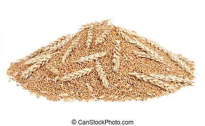 Pile of wheat grains