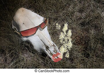 Cow skull in sunglasses - Cow skull in surreal setting