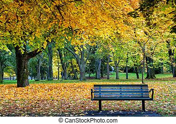 Quiet autumn Sunday in Folkparken, Norrkoping, Sweden