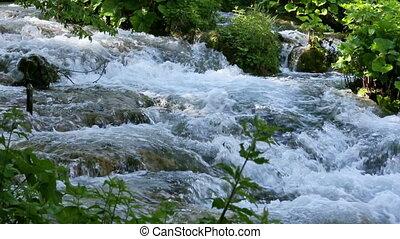 Summer mountain river