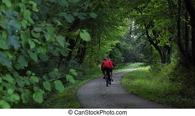 sport cyclists on a forest track