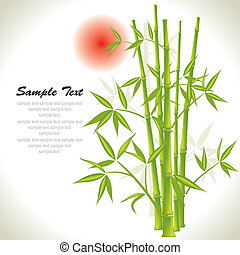 Bamboo background and sun, vector illustration