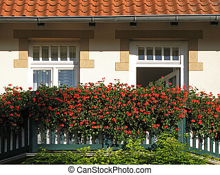 Beautiful decorated balcony - Beautiful decorated balcony in...