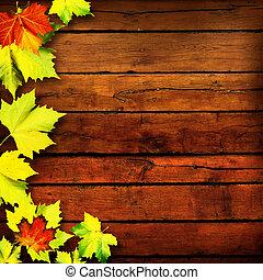 Extracto, fondos, hojas, otoño, diseño, su