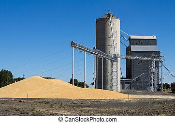 Grain elevator with pile of grain - A grain storage facility...