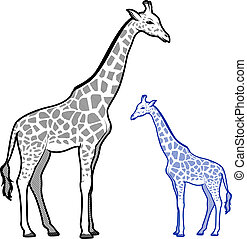 Giraffe Line Art Illustrations