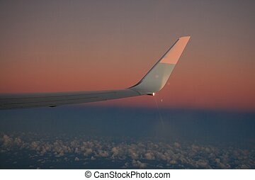 Wing at Sunset