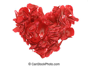 A heart of rose petals Isolated