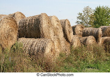 Pile of round bales of hay