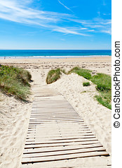 Wooden path over Dunes at a beach in Normandy, France