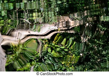 Reflections on Water with Ripples