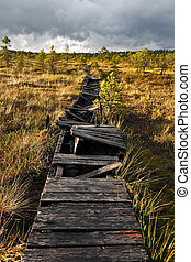 Broken walkway in a marsh in Estoni - A photo of an old...