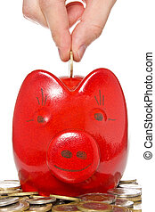 hand putting coin into the piggy bank