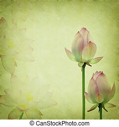 pink lotus on the old grunge paper background