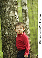 Boy at the tree - Boy in red jacket standing at tree at...