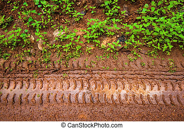 Muddy tire track on the grass way