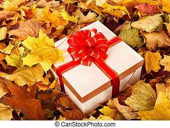 Gift box in fall foliage Autumn holiday