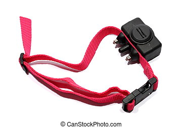 Shock Collar - Isolated shock collar used for dogs to stop...