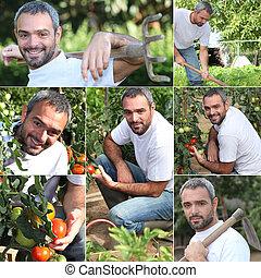 Vegetable gardener